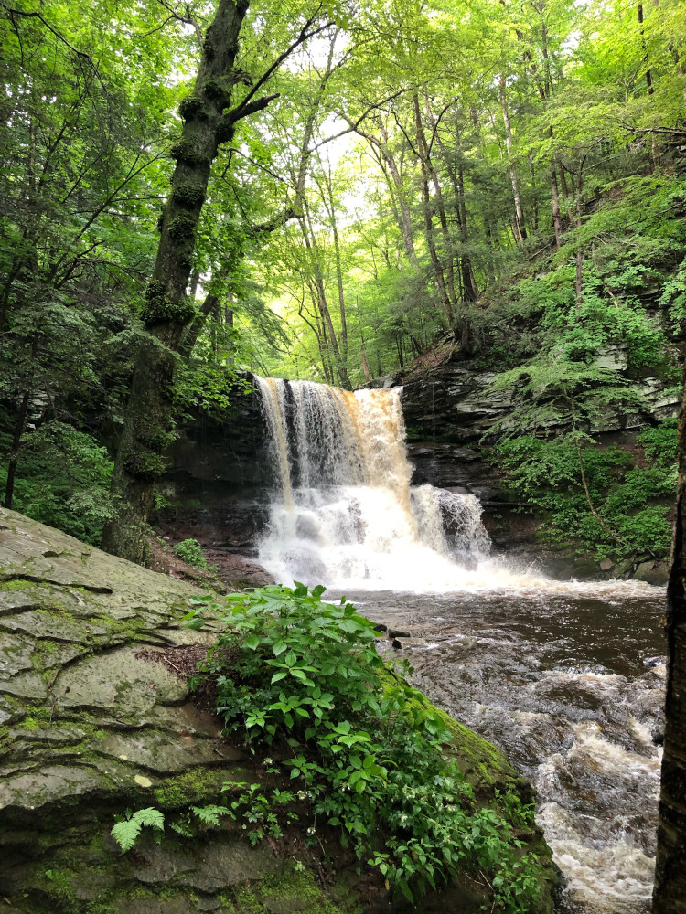 Waterfall at Ricketts Glen