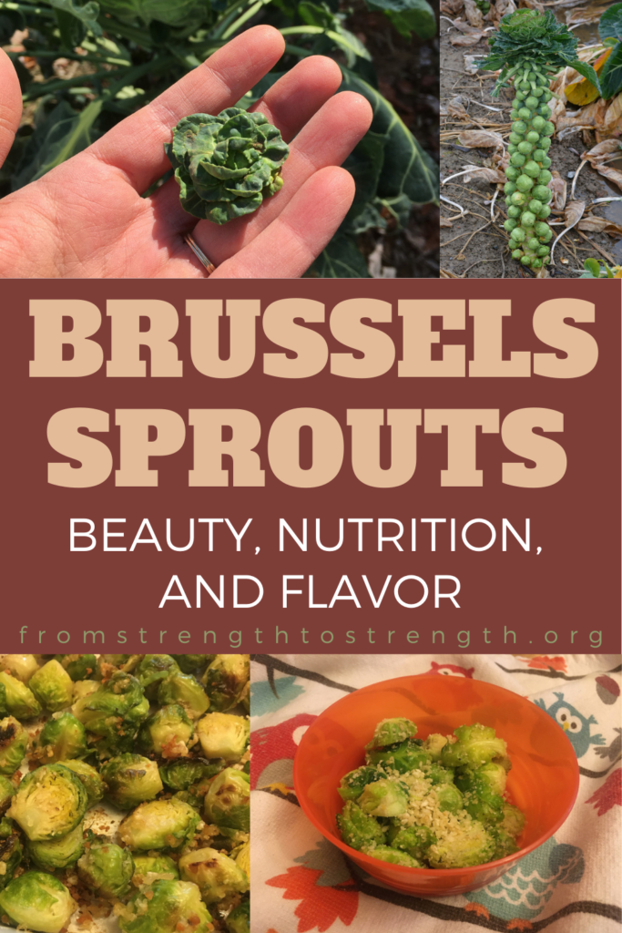 Brussels sprouts: beauty, nutrition, and flavor